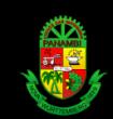 PREFEITURA MUNICIPAL DE PANAMBI